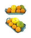 Citrus fruits in tray Royalty Free Stock Image