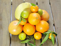 Citrus fruits various against wooden background Royalty Free Stock Photos