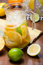 Citrus Ice Water Royalty Free Stock Images