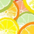 Citrus juice slices