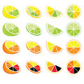 Citrus logos and icons Royalty Free Stock Photos