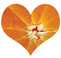 Citrus love Royalty Free Stock Image