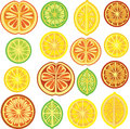 Citrus pattern, lemon, lime, orange Royalty Free Stock Images