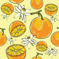 Citrus seamless pattern Stock Photography
