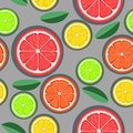 Citrus seamless pattern. Green, red and yellow citrus slices on a gray background. Fruit picking. Vector background EPS 8 Royalty Free Stock Photo