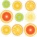 Citrus seamless pattern with slices of orange grapefruit and lime Stock Photos