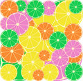Citrus segments seamless background Stock Image