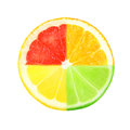 Citrus slice of on white background Stock Images
