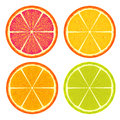 Citrus slices orange grapefruit and lemon in white background Stock Photography