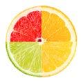 Citrus slices on white background Stock Photo