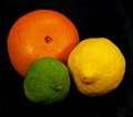 Citrus Still-life Royalty Free Stock Images