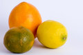 Citrus triple Royalty Free Stock Photo
