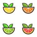 Citrus vector set