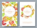 Citrus vertcal banners Royalty Free Stock Photo