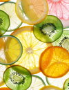 Citruses Stock Photography