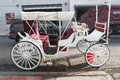 City carriage in Manhattan Royalty Free Stock Photo