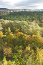 City line and fall forest vertical image Stock Image
