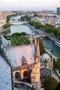 Looking over Paris from the Notre Dame Cathedral Royalty Free Stock Photo
