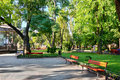City park at center town, summer season, bright sunlight and shadows, beautiful landscape, home and people on street Royalty Free Stock Photo