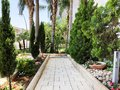 City park grounds with Green Palm trees, hedge, shrubs, and pathway. Royalty Free Stock Photo