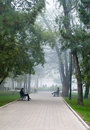 City park in morning fog Royalty Free Stock Photography
