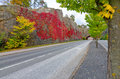 City road in autumn colors Royalty Free Stock Photo