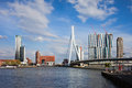 City of rotterdam cityscape in netherlands centre erasmus bridge erasmusbrug on nieuwe maas new meuse river Royalty Free Stock Photography