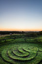 City Of Troy Maze - Sunrise - North Yorkshire - UK Royalty Free Stock Photo