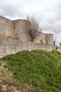 City walls view of the is surrounded by grass and dry trees on a cloudy day located in the spanish of toro its a vertical Stock Image