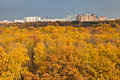 Cityscape with autumn urban park Royalty Free Stock Photo