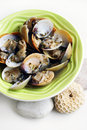 Clam dish cooked with wine, garlic, herbs Royalty Free Stock Images