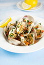Clams Royalty Free Stock Photos