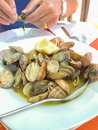 Clams cooked in a white bowl with lemon Royalty Free Stock Image