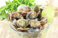 Clams seasoned with salt and herbs Stock Photography