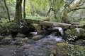 Clapper bridge over tributory stream to east dart on dartmoor Royalty Free Stock Photo