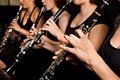 Clarinetist performance Royalty Free Stock Images