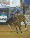 Clark county fair e o rodeio Foto de Stock