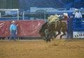 Clark county fair e o rodeio Imagem de Stock