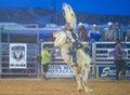 Clark county fair e o rodeio Imagem de Stock Royalty Free