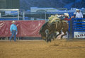 Clark county fair en de rodeo Stock Afbeelding