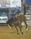 Clark county fair och rodeon Arkivfoto