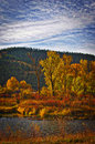 The Clark Fork River Fall Colors Royalty Free Stock Photo