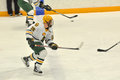 Clarkson Adam Pawlick in NCAA Hockey Game Royalty Free Stock Images