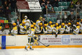 Clarkson Bench celebrate the goal Stock Photos