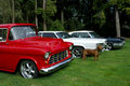 Classic American Cars and Pit Bull Stock Photo