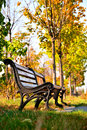 Classic benches in city park in front of trees two Royalty Free Stock Photo