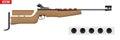 Classic Biathlon rifle and target