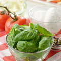 Classic caprese ingredients mozzarella cheese tomatoes and basil Royalty Free Stock Photo