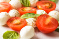 Classic caprese salad tomato mozzarella and basil leaves Stock Photos