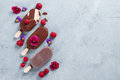 Classic chocolate ice cream with berry